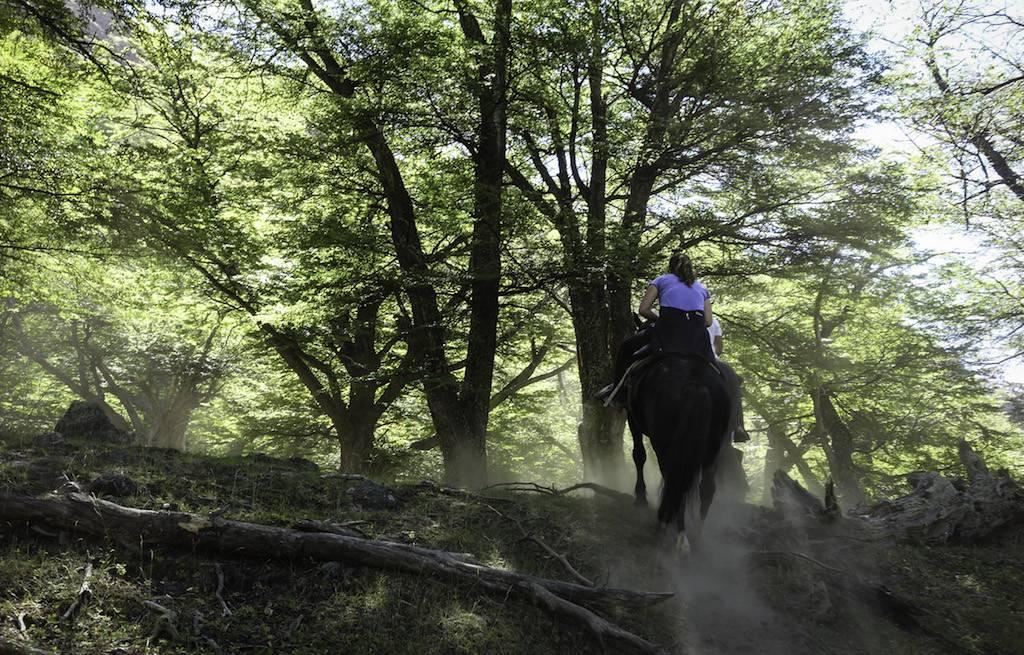 cavalgada-patagonia-el-chalten